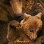Disneynature Presents BEARS