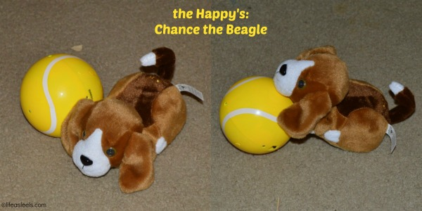 Chance the Beagles #TheHappys