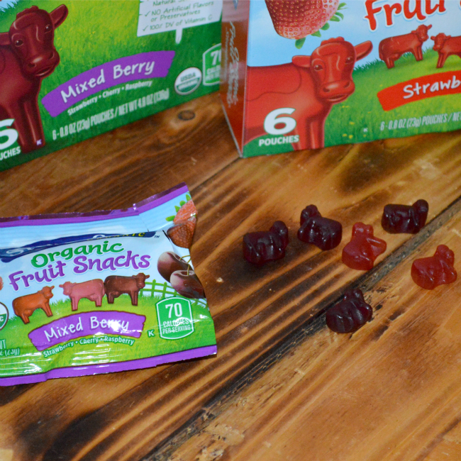 Organic Fruit Snacks from Stonyfield