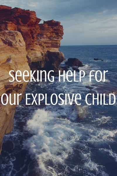 Seeking-Help-for-Our-Explosive-Child