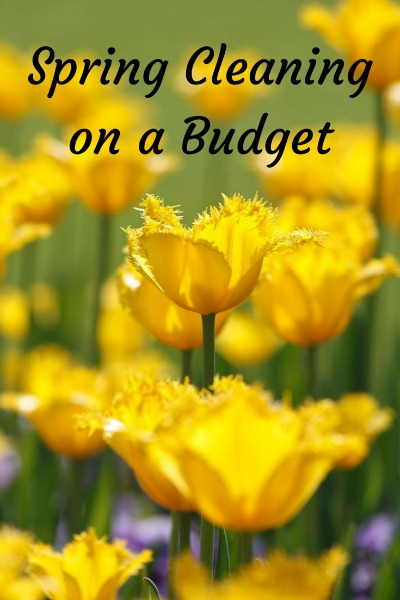 Spring-Cleaning-on-a-Budget