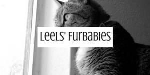 Leels-Furbabies-Category.png