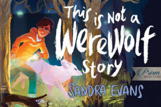 This is Not a Werewolf Story by Sandra Evans {Children Book Review}