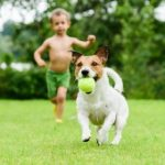 Educational and Psychological Benefits for Children with Pets